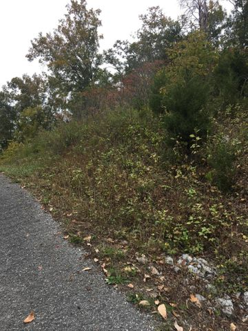 Lot 714 Russell Brothers Rd, Sharps Chapel, TN 37866
