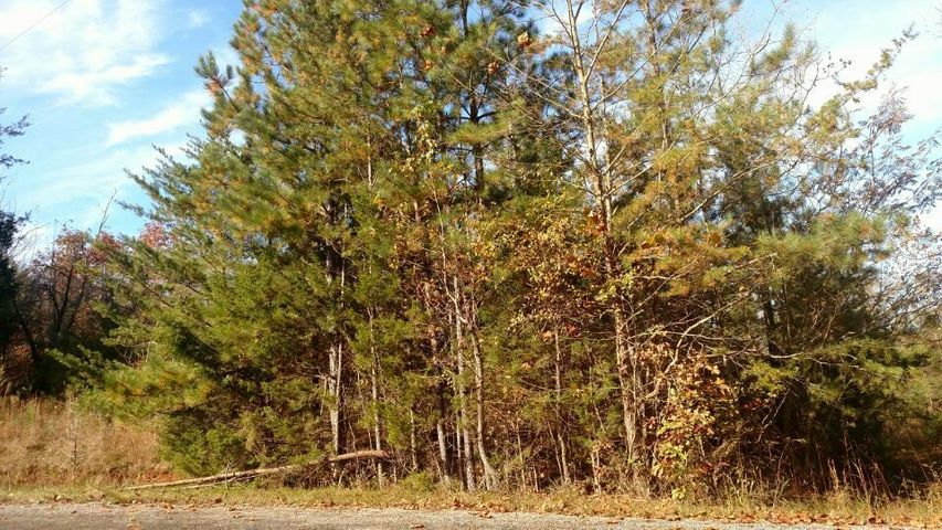 Lot 2 Beech Springs Rd., Ocoee, TN 37361