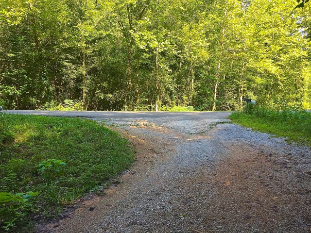Dabney Lane, Rocky Top, TN 37769