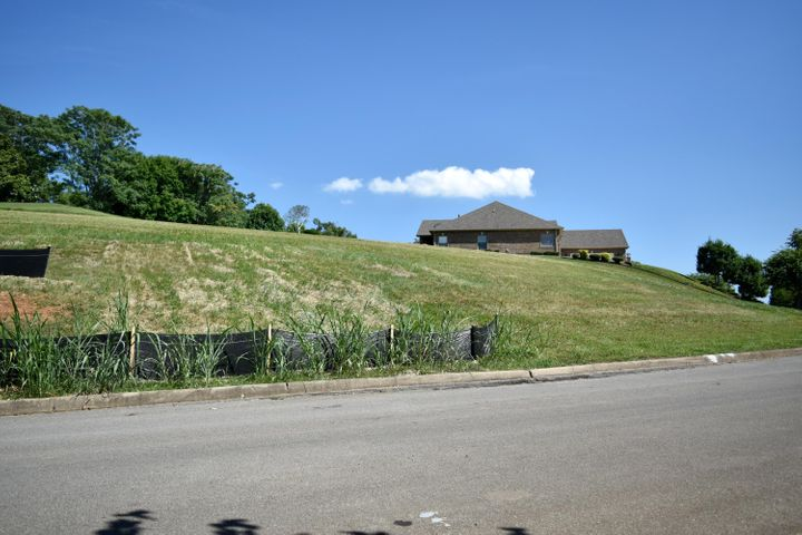 150 Pineberry Drive, Vonore, TN 37885