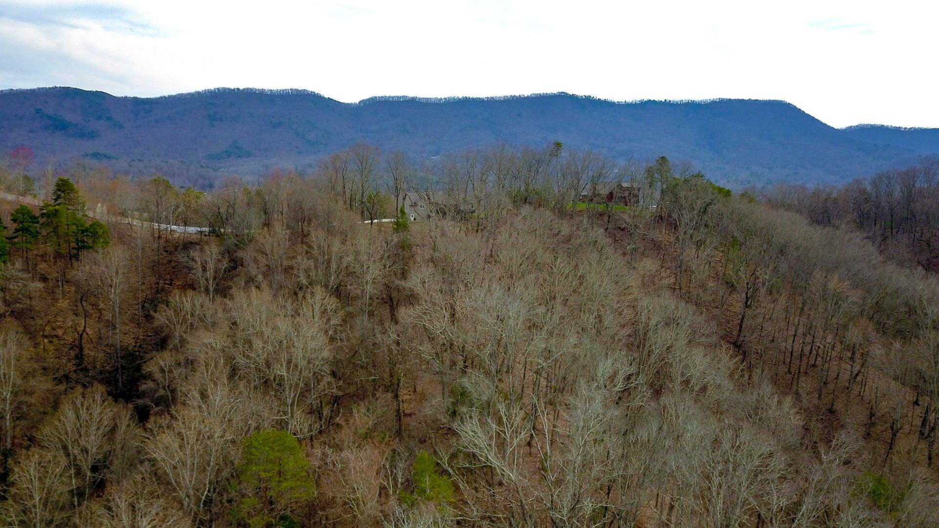 331 Chestnut Ridge Rd, Walland, TN 37886