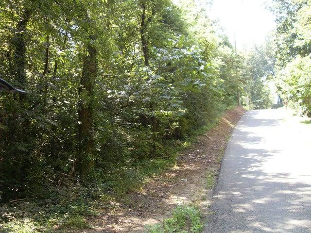 Peltier Rd, Knoxville, TN 37912