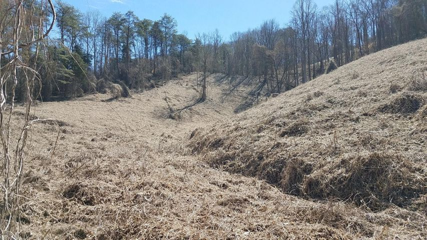 Tbd Epperson Rd, Tazewell, TN 37879
