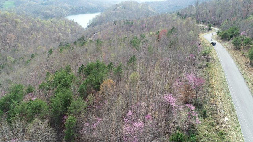 Lot 713 Whistle Valley Rd, New Tazewell, TN 37825