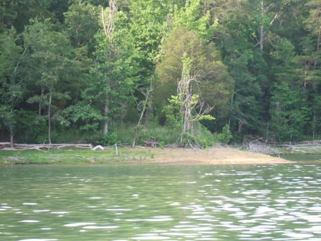 Lot 50 Mountain Shores Rd, New Tazewell, TN 37825