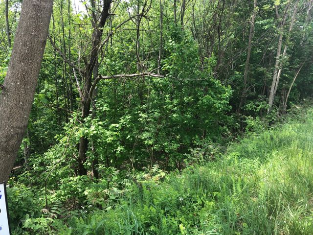Lot 628 Chimney Rock, New Tazewell, TN 37825