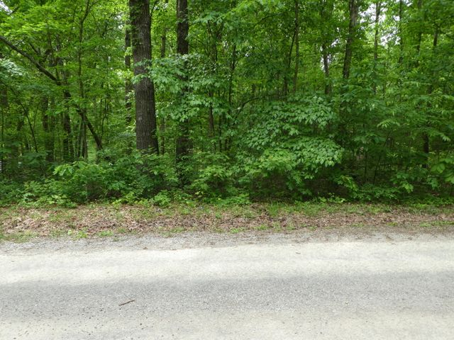 George Young Rd, Jamestown, TN 38556