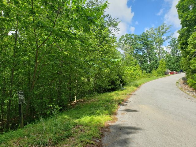 Lot 564 Tortoiseshell Circle, New Tazewell, TN 37825