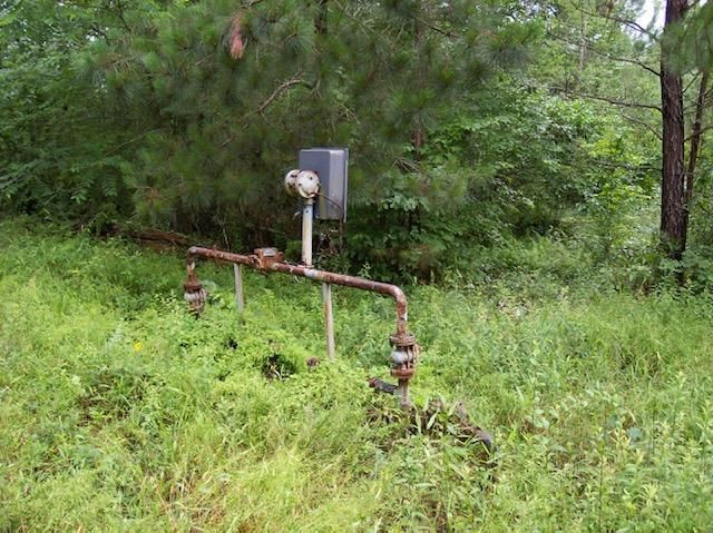 Jim Mcgill Rd, Deer Lodge, TN 37726