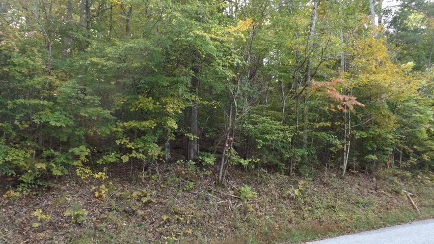 Lake Lane, New Tazewell, TN 37825