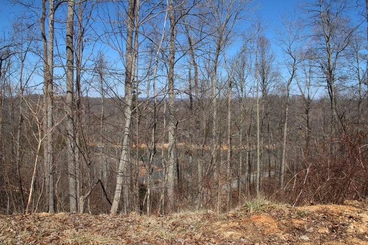 Lot 624 N Two Rivers Lane, LaFollette, TN 37766