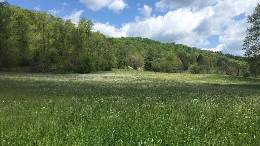 Upper Caney Valley, Tazewell, TN 37879