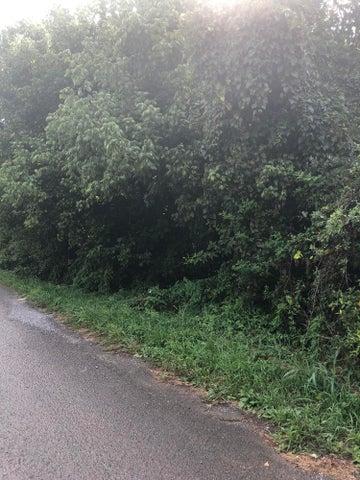 Meadow St, Harrogate, TN 37752
