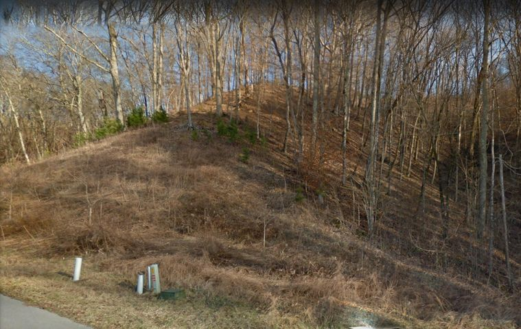 Lot 756 Russell Brothers, Sharps Chapel, TN 37866