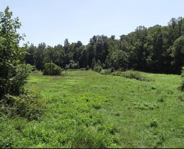 Snodgrass Rd, New Tazewell, TN 37825
