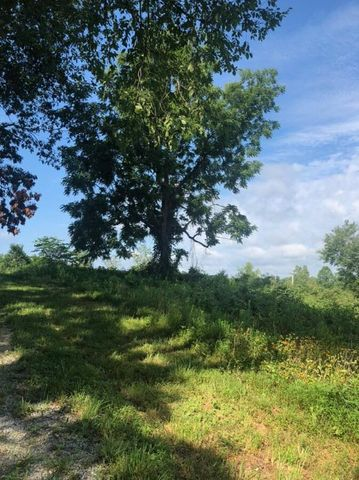 Saddleridge Dr Drive, Speedwell, TN 37870