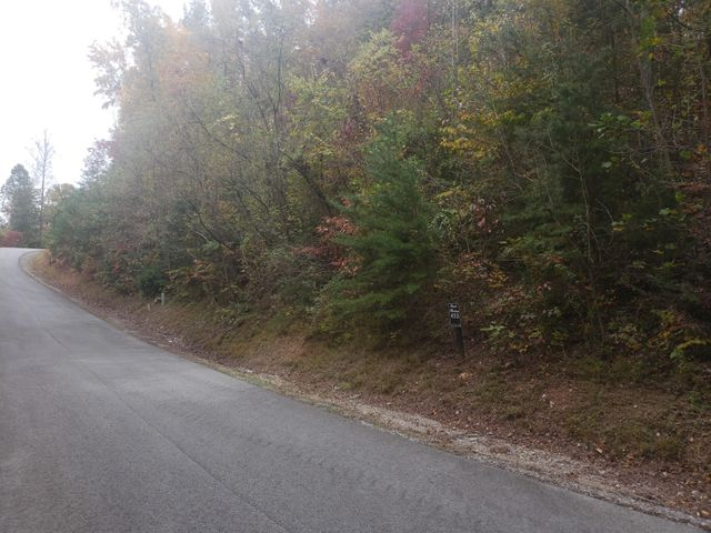 Lot 453 Silver Tr, New Tazewell, TN 37825