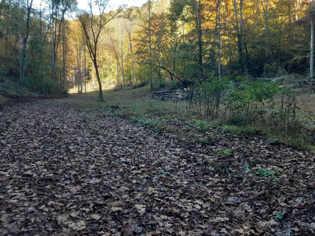 00 Caney Valley Rd, Tazewell, TN 37879