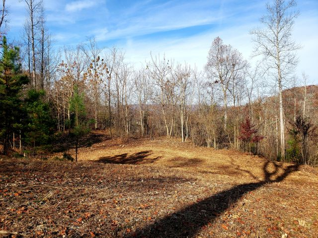 Lot 18 Lakemont Lane, Caryville, TN 37714