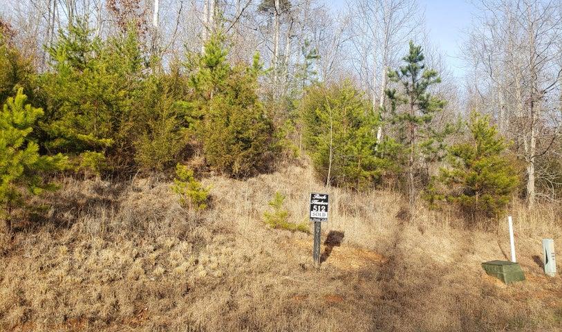 Lot 512 Mystic Star Drive, New Tazewell, TN 37825