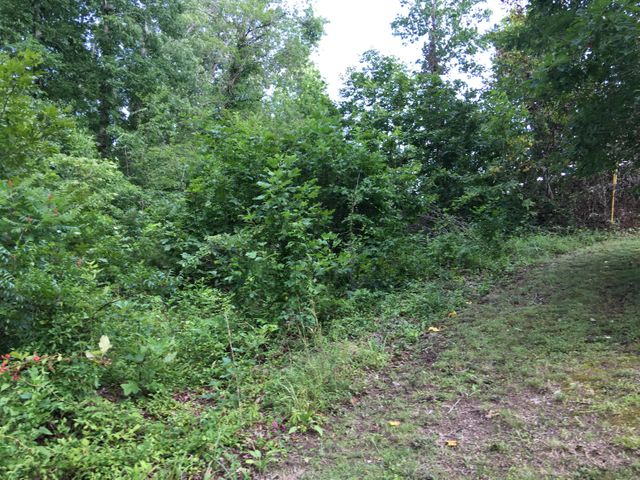 Lot # 524 Whistle Valley Rd, New Tazewell, TN 37825