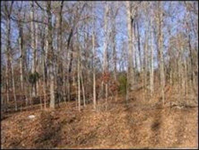 Sweetwater Vonore Rd, Sweetwater, TN 37874