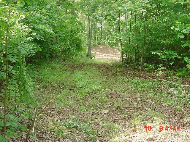 Lot #547 Timber Creek Rd, New Tazewell, TN 37825