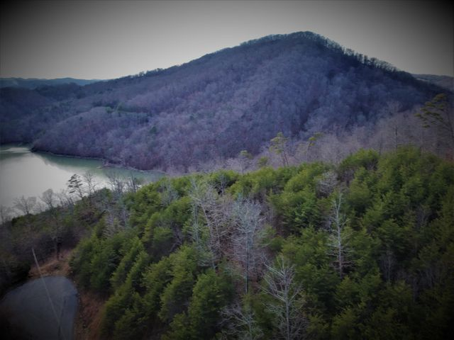 2128 Whistle Valley Rd, New Tazewell, TN 37825