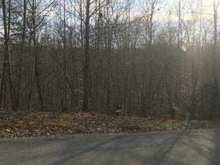 Moonstone Lane, New Tazewell, TN 37825