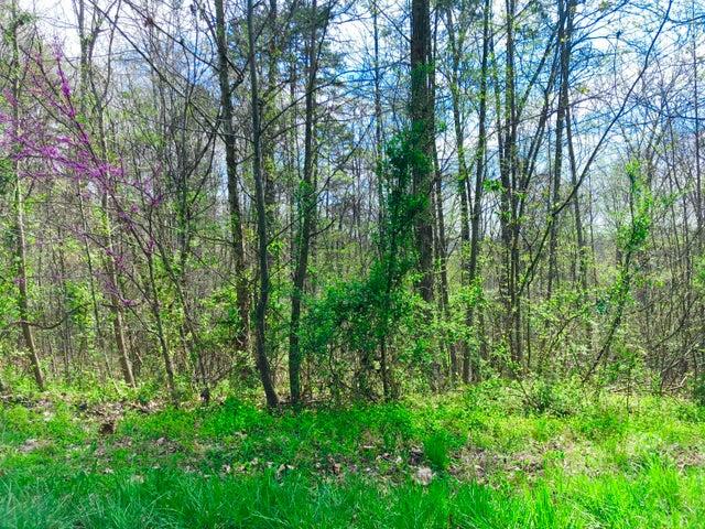 Lot 2 Hickory Point Lane, Maynardville, TN 37807