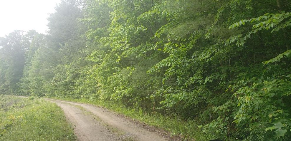 Cedar Ridge Rd, Oliver Springs, TN 37840