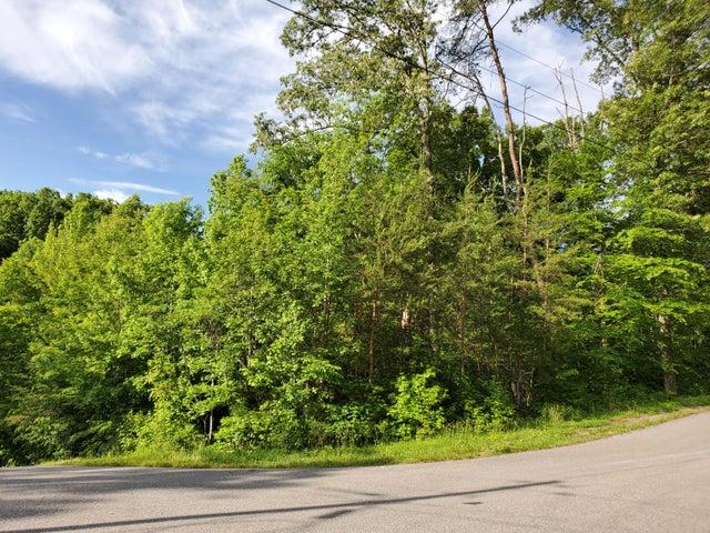 Lot 829 Wildcat Hollow Rd, New Tazewell, TN 37825