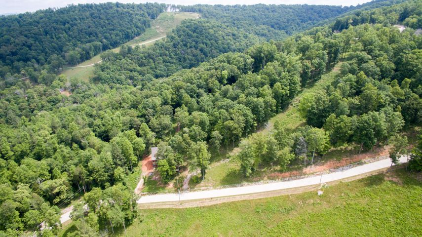 Pinnacle Pointe Way Lot 100, Sharps Chapel, TN 37866