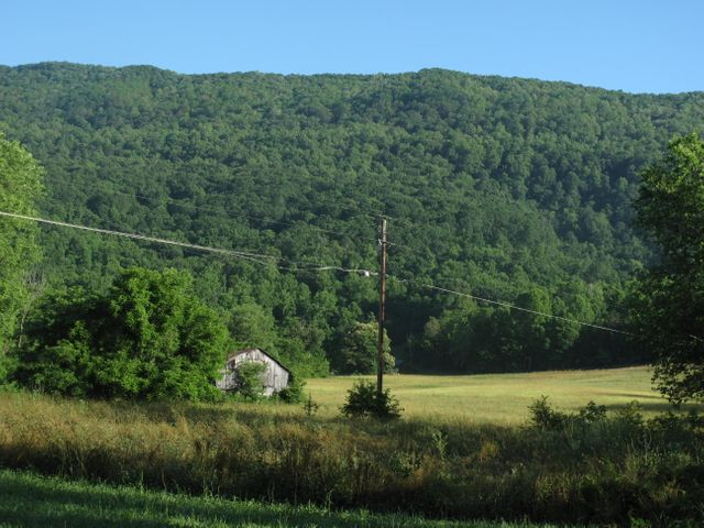 556 Wilson Gap Rd, Speedwell, TN 37870