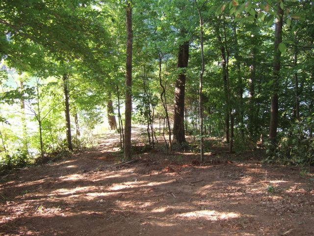 Lot 50 Mountain Shores Road, New Tazewell, TN 37824