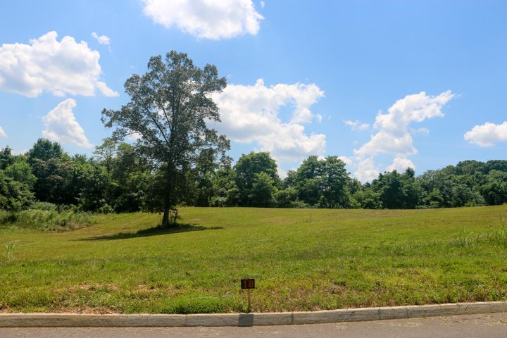 Lot 18 Dogwood Meadows Drive, Strawberry Plains, TN 37871
