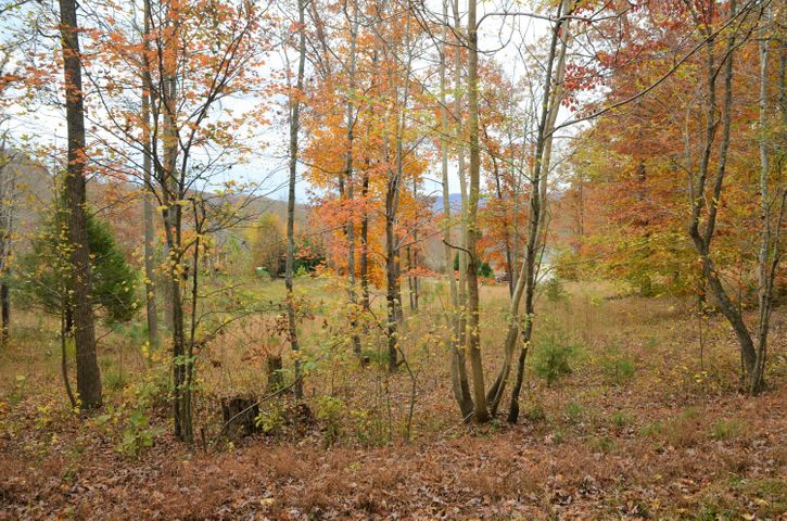 0 Fox Ridge Lane, Caryville, TN 37714