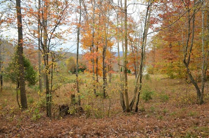 795 Fox Ridge Lane, Caryville, TN 37714