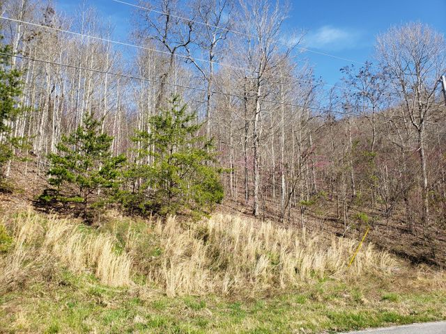 Lot 576 Whistle Valley Rd, New Tazewell, TN 37825