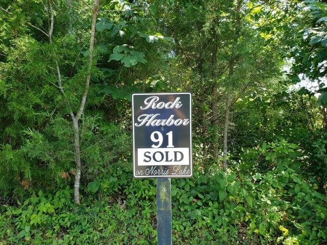 91 Smokey Quartz Blvd, New Tazewell, TN 37824