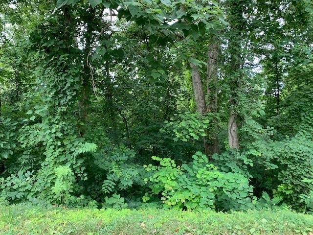Lot 26 Booker Rd, Maynardville, TN 37807