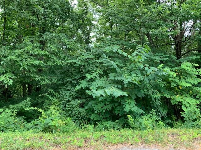 Lot 28 Booker Rd, Maynardville, TN 37807