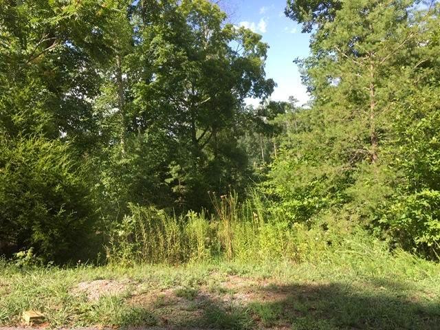 Lot 11 Hickory Pointe Lane, Maynardville, TN 37807