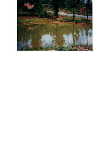 Lot 116 Chimney Rock Rd, New Tazewell, TN 37825