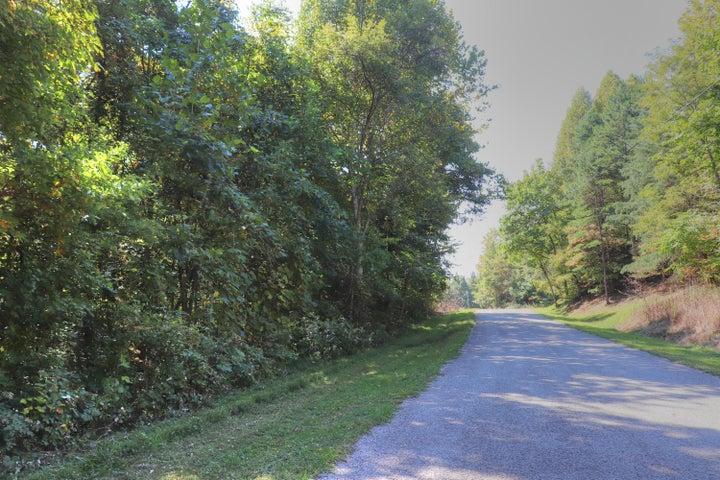 Lot 164 Chimney Rock Rd, New Tazewell, TN 37825