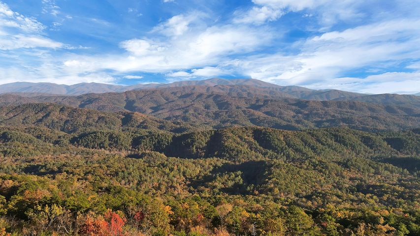 Tract 29r7 Chilhowee Mountain Tr, Maryville, TN 37803