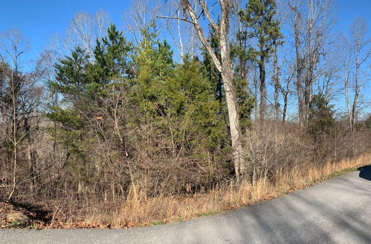 Deerfield Way, LaFollette, TN 37766