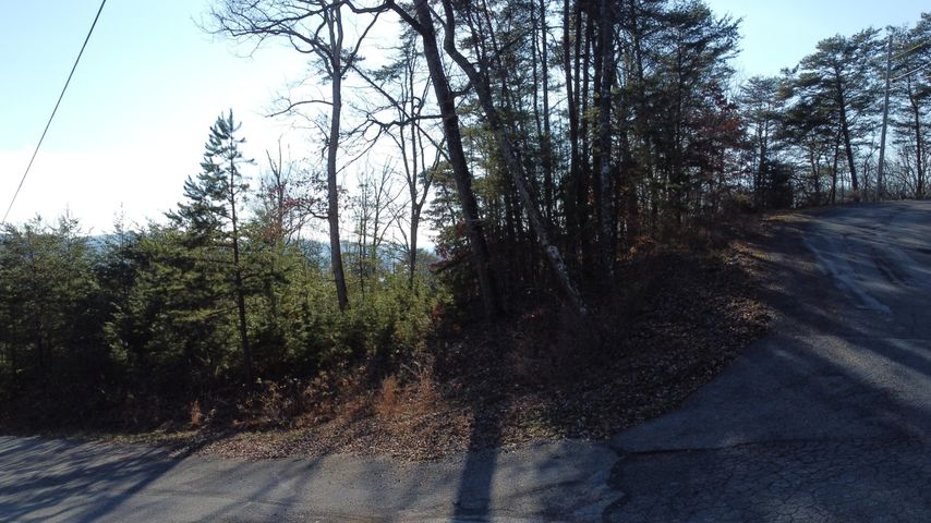 lot 155 Emerald Point, Sharps Chapel, TN 37866