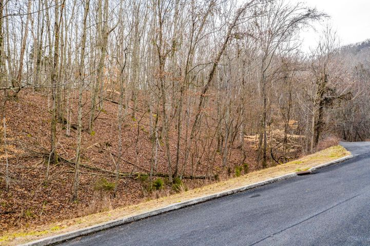 9039 Paradise View Drive, Mooresburg, TN 37811