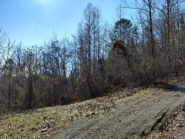 Calvary Rd, New Tazewell, TN 37825